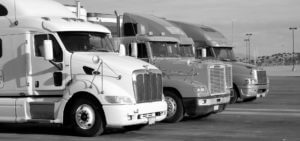 Semi-trucks-lined-up